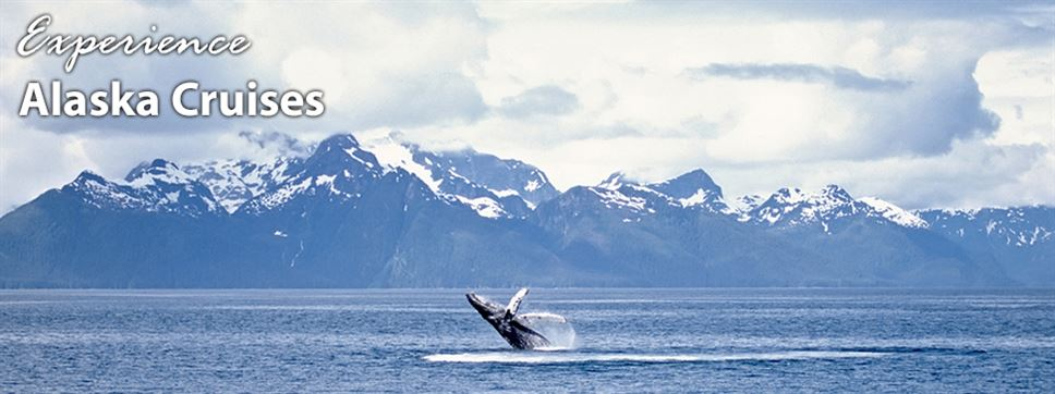travel agents specializing in alaska